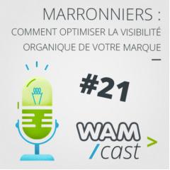 Vignette podcast Wamcast